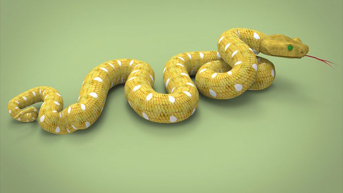 Yellow Snake Dream - Dream Interpretation & Symbols