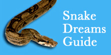 Dreaming about a Snake Attack - Dream Interpretation & Symbols